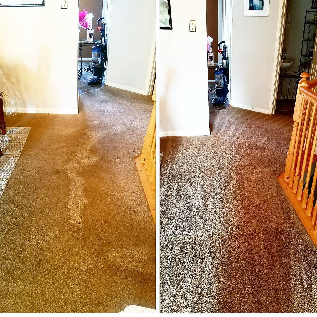 Deep Carpet Cleaning